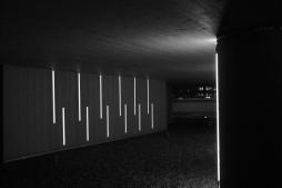 Parklicht 2018 Lines i.s.m. Ingrid Roos, Tropenhotel Amsterdam